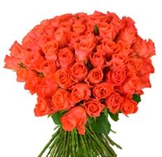 trandafiri buchet